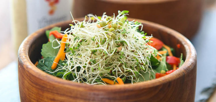 Asiago Peppercorn Kale and Sprout Salad